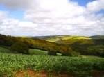 Who owns Britain: Top UK landowners