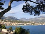 Tour private gardens of the Cote d�Azur with Country Life